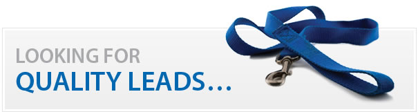 quality-leads